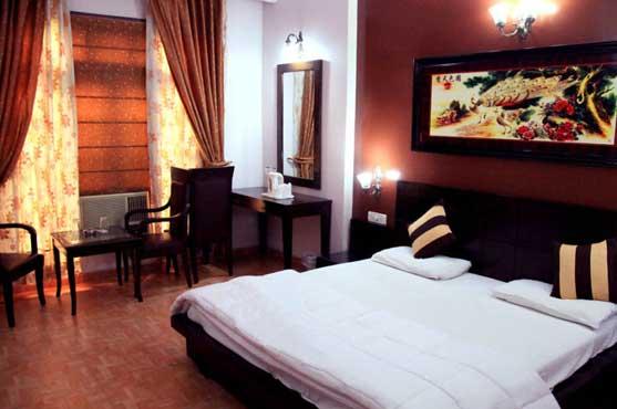 Hotel Midtown Karolagh Delhi